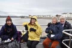 Birdwatching on the River Exe
