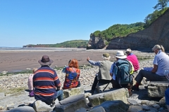 May 2017 - St Audries Bay with Barnstaple U3A