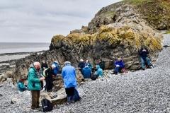May 2019 Sand Point, Minehead with Taunton U3A