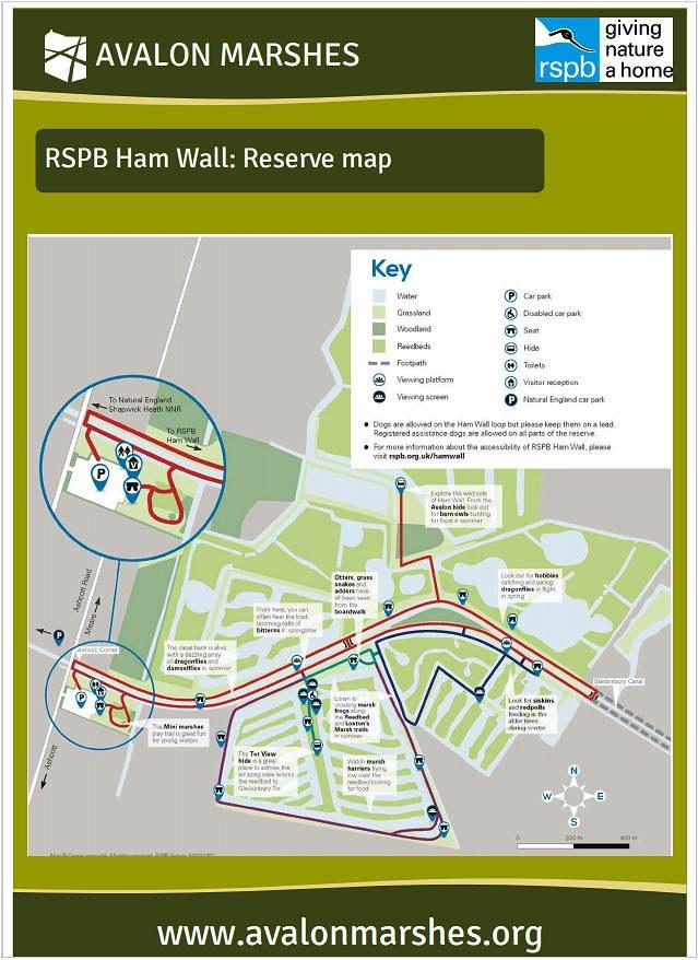 Ham-Wall-RSPB