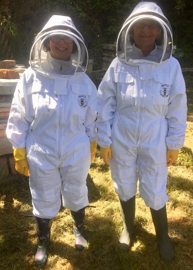 image of two members in bee suits
